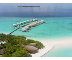 寻味自然,采撷文化 马尔代夫帝嘉丽度假酒店打造沉浸式海岛假期