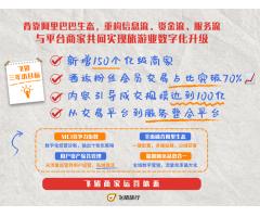 """飞猪发布旅游数字化""""小目标"""":三年扶持新增150个亿级商家"""